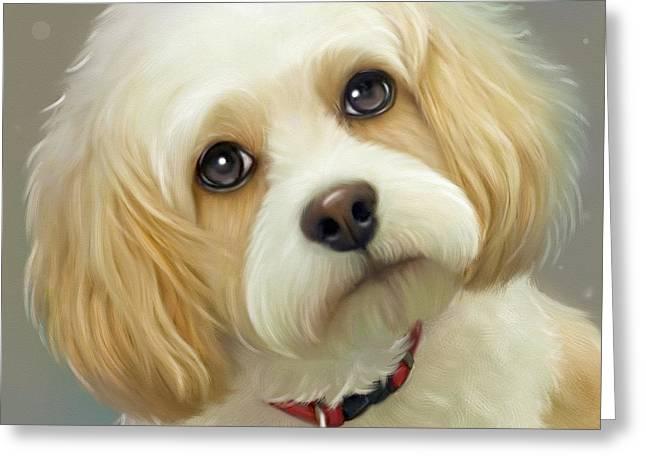 Lucas Cavachon Greeting Card