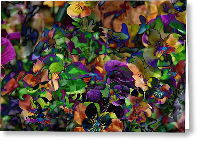 Lucy In Sky Pansies Greeting Card