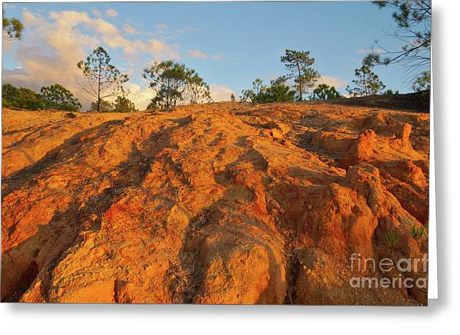 Ludo Red Sands. Algarve Greeting Card