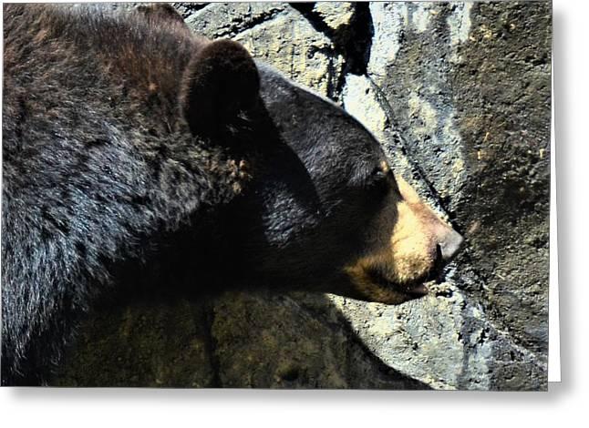 Lumbering Bear Greeting Card