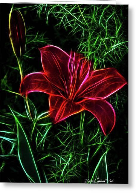 Luminous Lily Greeting Card by Joann Copeland-Paul