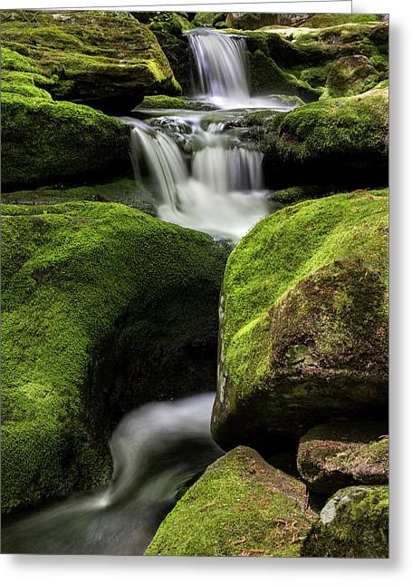 Luminous Triple Falls - Tunxis State Forest   Greeting Card by Thomas Schoeller