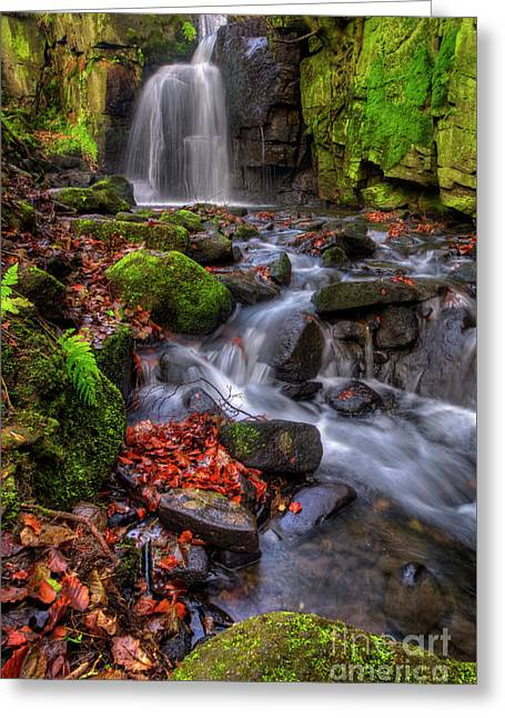 Greeting Card featuring the photograph Lumsdale Falls 4.0 by Yhun Suarez
