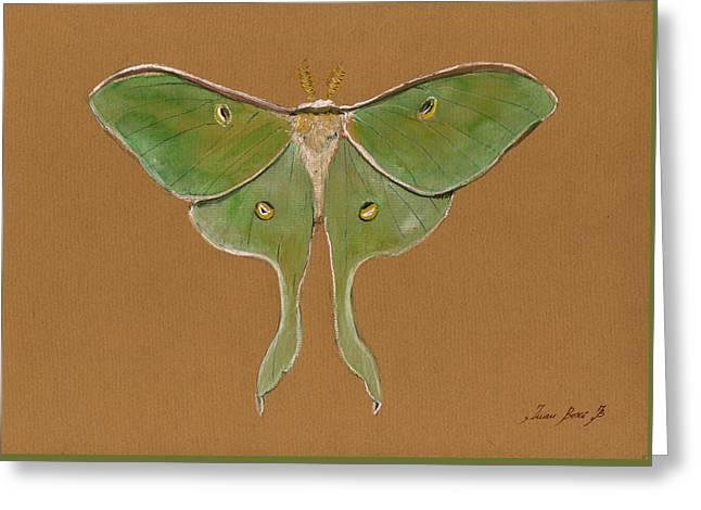Luna Moth Greeting Card by Juan Bosco