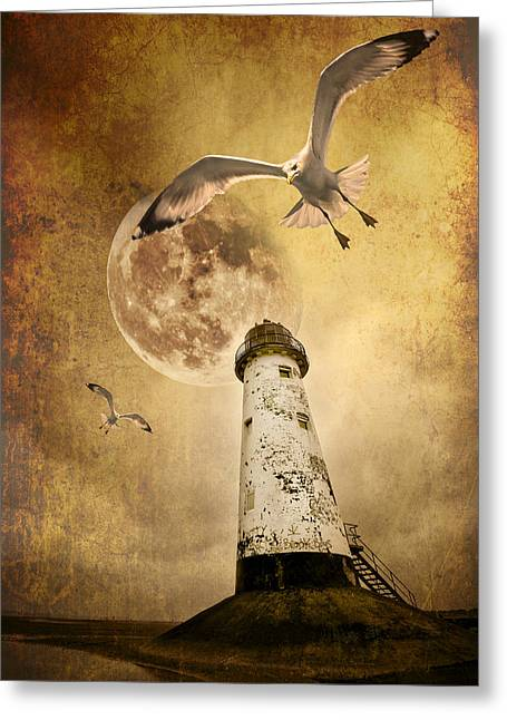 Birds Moon Greeting Cards - Lunar Flight Greeting Card by Meirion Matthias