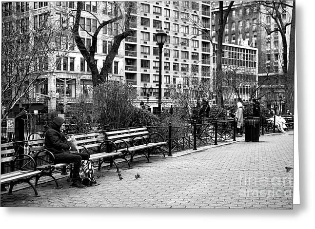 Lunch At Union Square Park Greeting Card by John Rizzuto