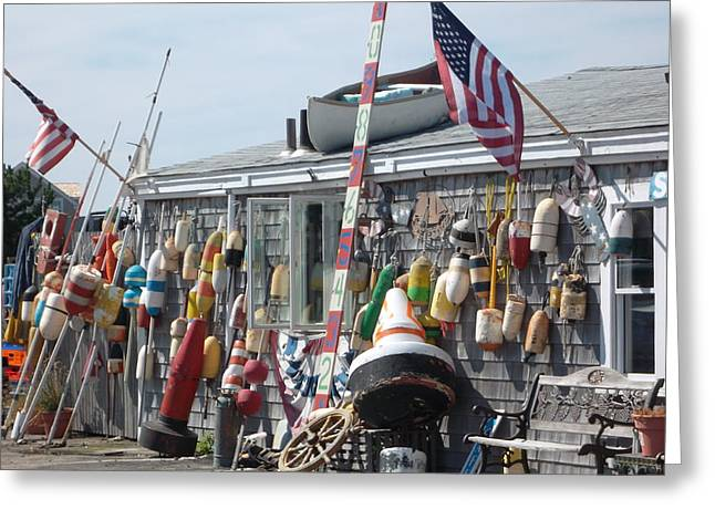 Harbor Sesuit Harbor Greeting Cards - Lunchtime Greeting Card by Amy Holmes