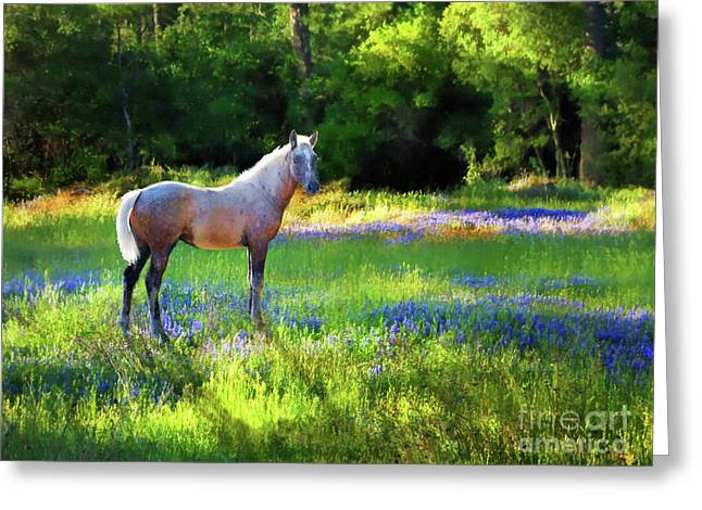 Greeting Card featuring the photograph Lupine Delight by Melinda Hughes-Berland