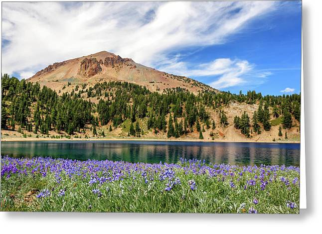 Lupines Lake And Lassen Greeting Card