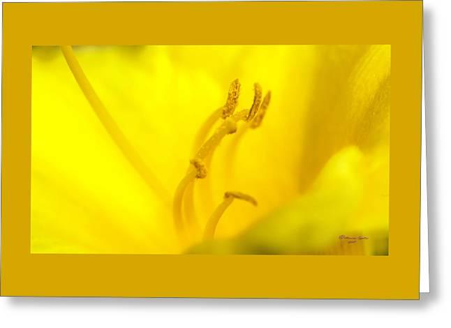 Luscious Yellow Greeting Card