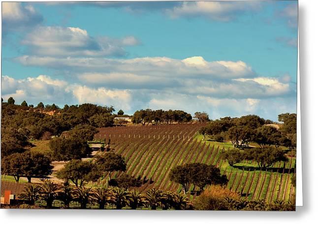 Lush California Farmland  Greeting Card by L O C