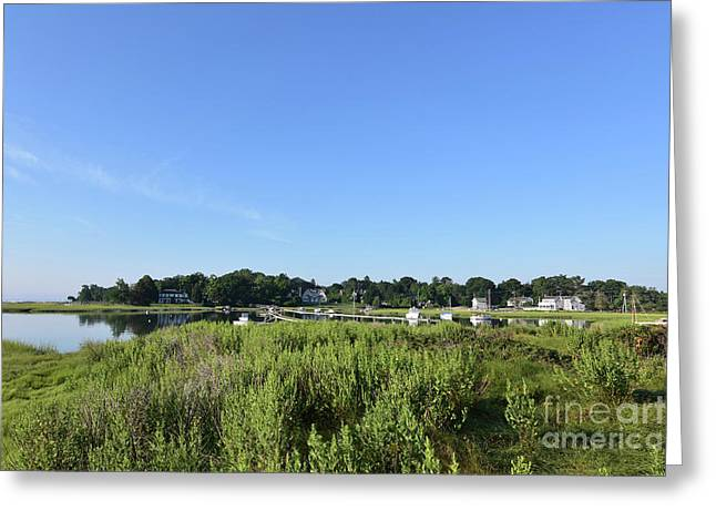 Lush Green Marsh Grass Along Duxbury Bay Greeting Card by DejaVu Designs