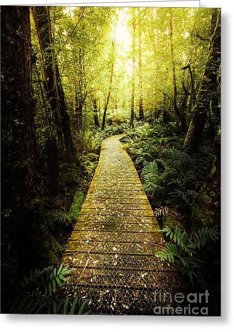 Lush Green Rainforest Walk Greeting Card