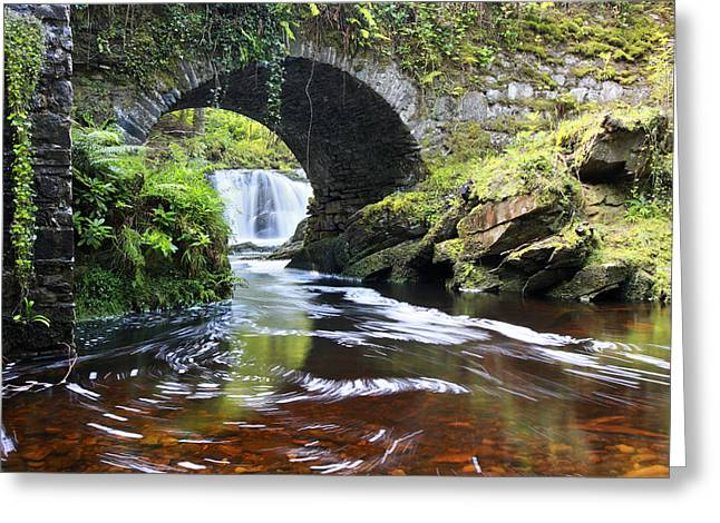 Lush River Killarney Ireland Greeting Card