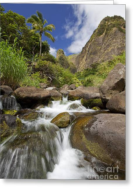 Lush Tropical Iao River Valley Greeting Card