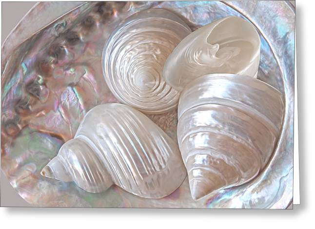 Lustrous Shells Greeting Card by Gill Billington