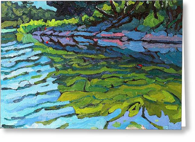 Lyndhurst Shoreline Greeting Card