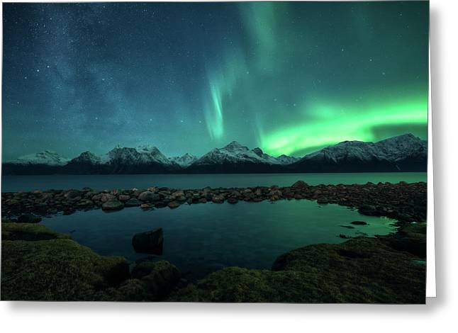 Lyngsalpan Greeting Card by Tor-Ivar Naess