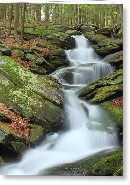 Lynnes Falls New England National Scenic Trai Greeting Card by John Burk