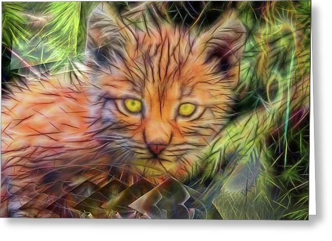 Lynx Kitten - Square Version Greeting Card by John Robert Beck