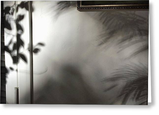 Greeting Card featuring the photograph Lysiloma Shadows by Kim Nelson