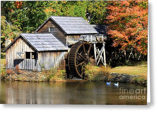Mabry Mill Greeting Card by Lena Auxier
