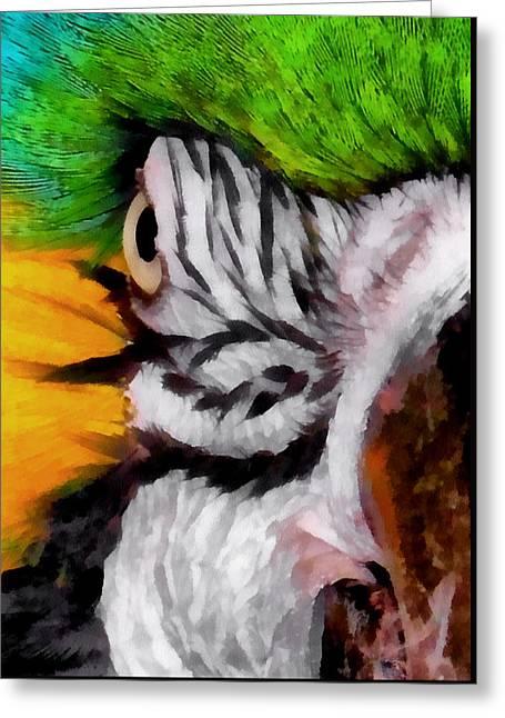 Macaw Upclose 1 Greeting Card by Ernie Echols