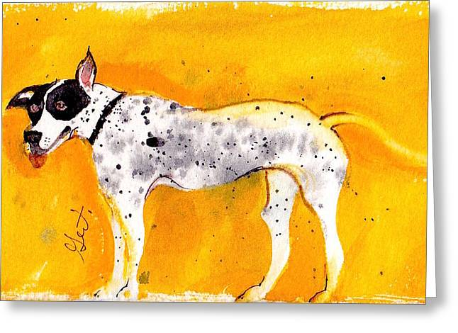 Mack The Pit/dalmatian Greeting Card