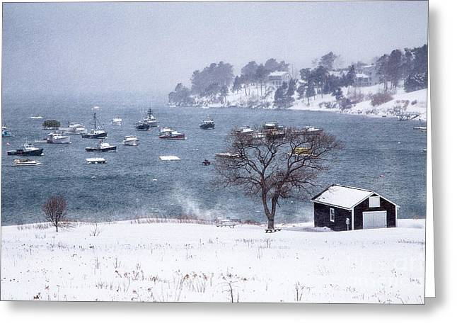 Mackerel Cove Snow Greeting Card