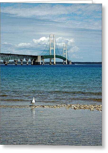 Greeting Card featuring the photograph Mackinac Bridge Private Seagull Beach by LeeAnn McLaneGoetz McLaneGoetzStudioLLCcom