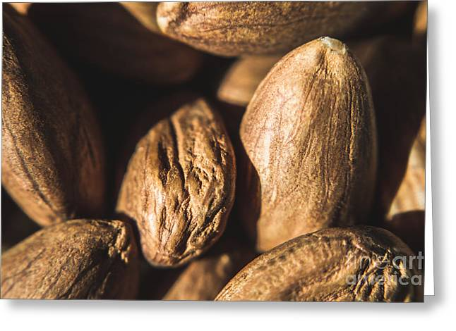 Macro Almonds Greeting Card by Jorgo Photography - Wall Art Gallery