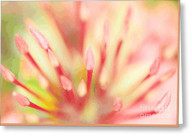 Macro Buds Abstract Greeting Card by Jan Tyler