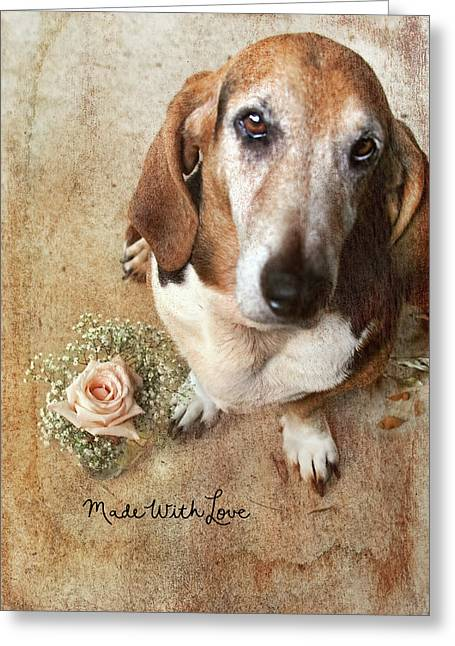 Made With Love II Greeting Card by Joan Bertucci