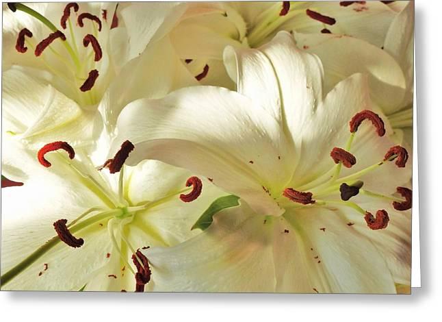 Madonna Lilies Greeting Card