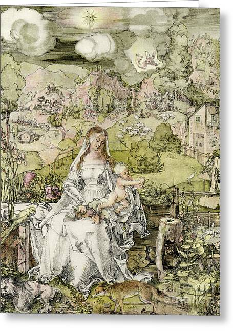 Madonna With The Animals Greeting Card by Albrecht Durer