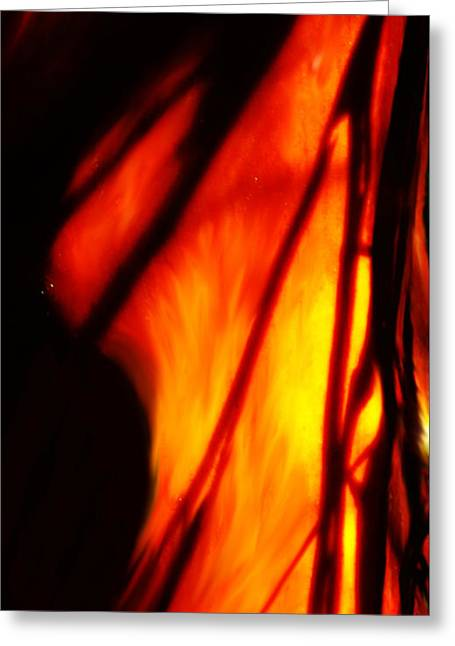 Madrone In Flames Greeting Card by Wendy Rickwalt