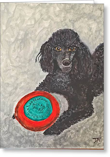 Maggie And Her Frisbee Greeting Card