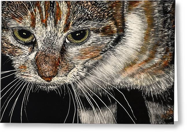 Maggie The Cat Greeting Card by Robert Goudreau