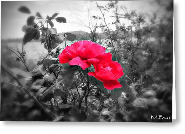 Magic Flower Greeting Card by Michael Burleigh