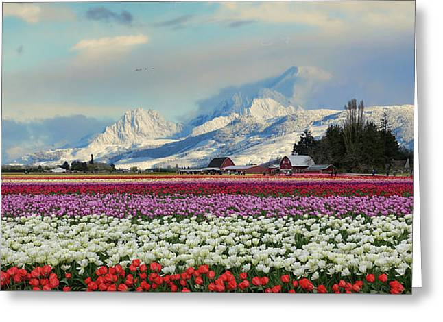 Magic Landscape 1 - Tulips Greeting Card by Rick Lawler