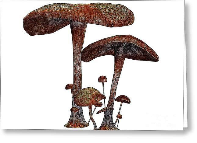 Magic Mushrooms, Digital Art By Mb Greeting Card