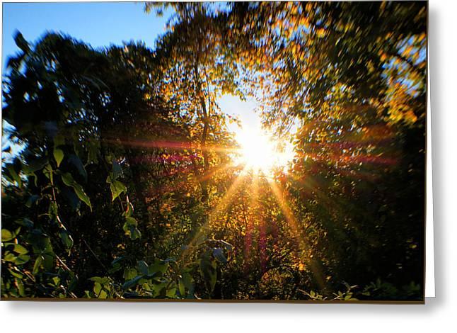 Magic Of Sun Greeting Card by Lilia D