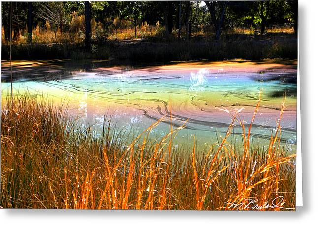 Oil Slick Greeting Cards - Magic Pond Greeting Card by Melissa Wyatt