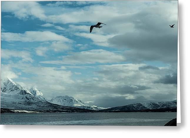 Magic View Of Norway Greeting Card