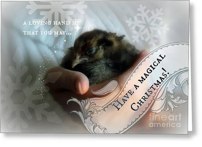 Magical Chickmas Greeting Card by Anita Faye