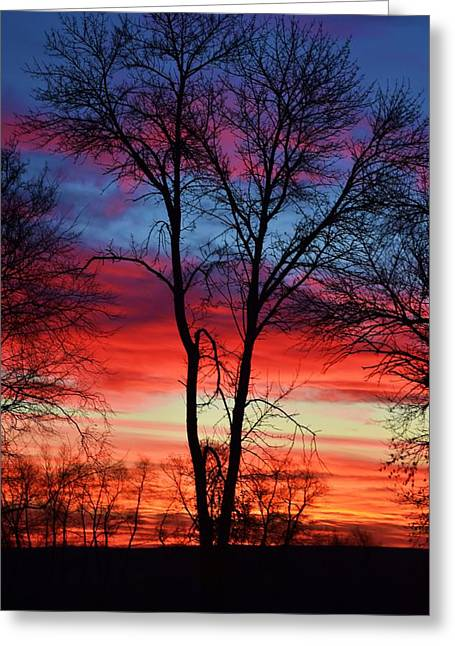 Magical Colors In The Sky Greeting Card