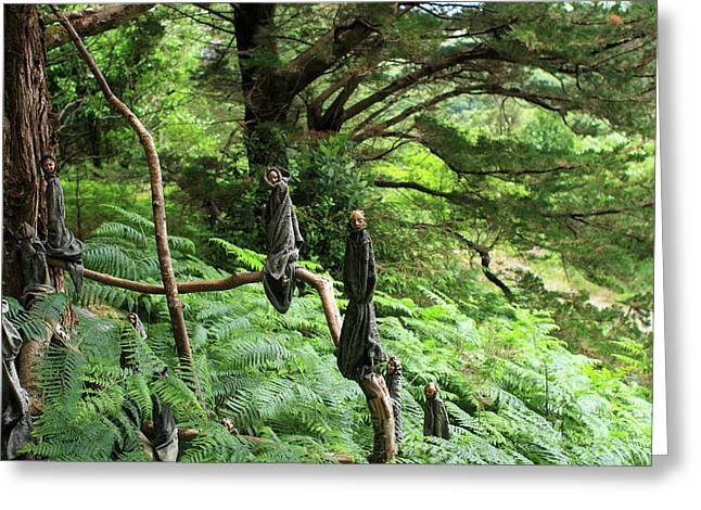 Greeting Card featuring the photograph Magical Forest by Aidan Moran