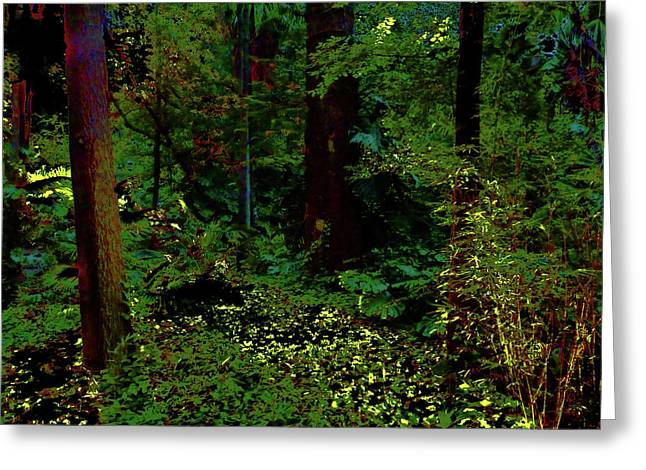 Magical Forest Greeting Card
