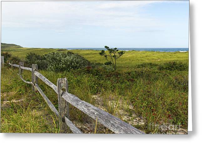 Greeting Card featuring the photograph Magical Landscape by Michelle Wiarda
