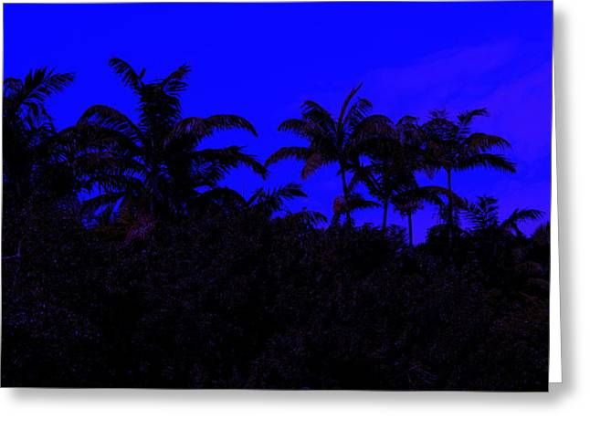 Magical Miami Greeting Card by Lessandra Grimley